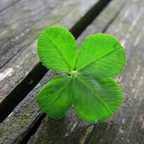 How to Get Lucky Finding Your First Marketing Company